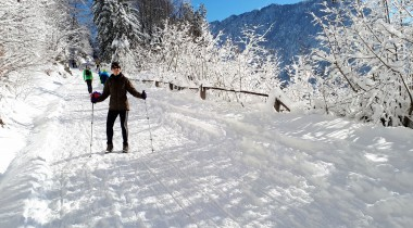 A World of Winter Sports in Tržič: Ljubelj and Zelenica