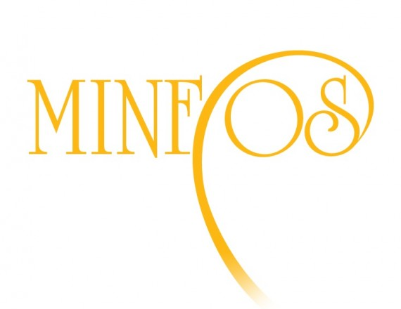 International Minerals, Fossils, and Environment Days - MINFOS