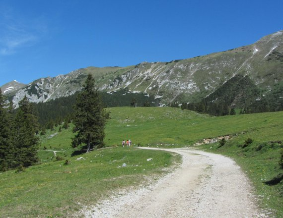 Mountain pastures below Košuta